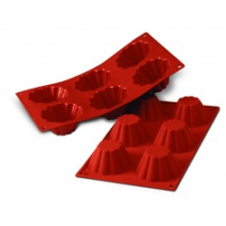 Flex 6 Briochettes
